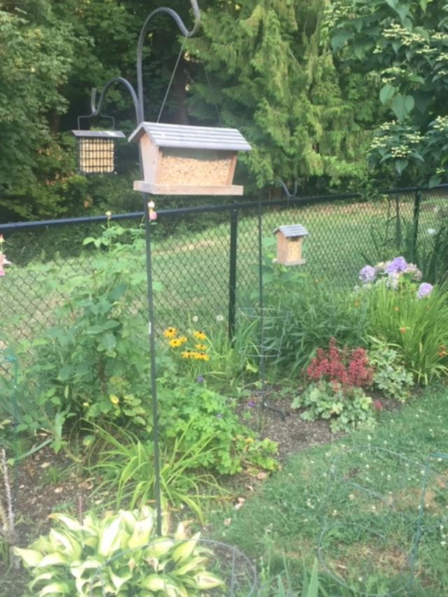 Bird Feeder and Suet Station