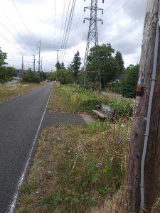 Biking-Walking Trail 4
