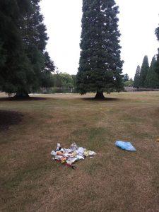 Westmoreland Park 2